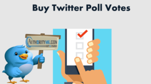 buy_twitter_poll_vote